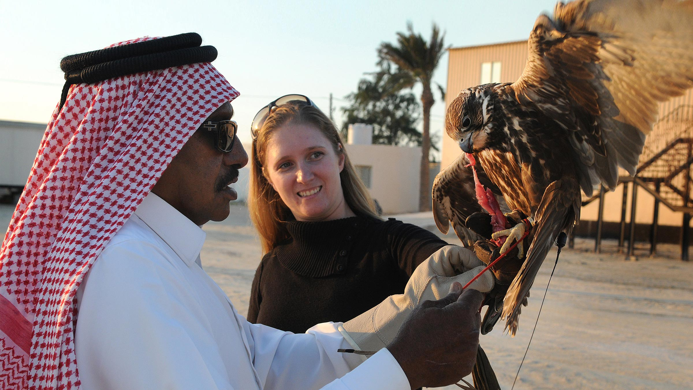 Service member learns about local Arab traditions from local holding a falcon