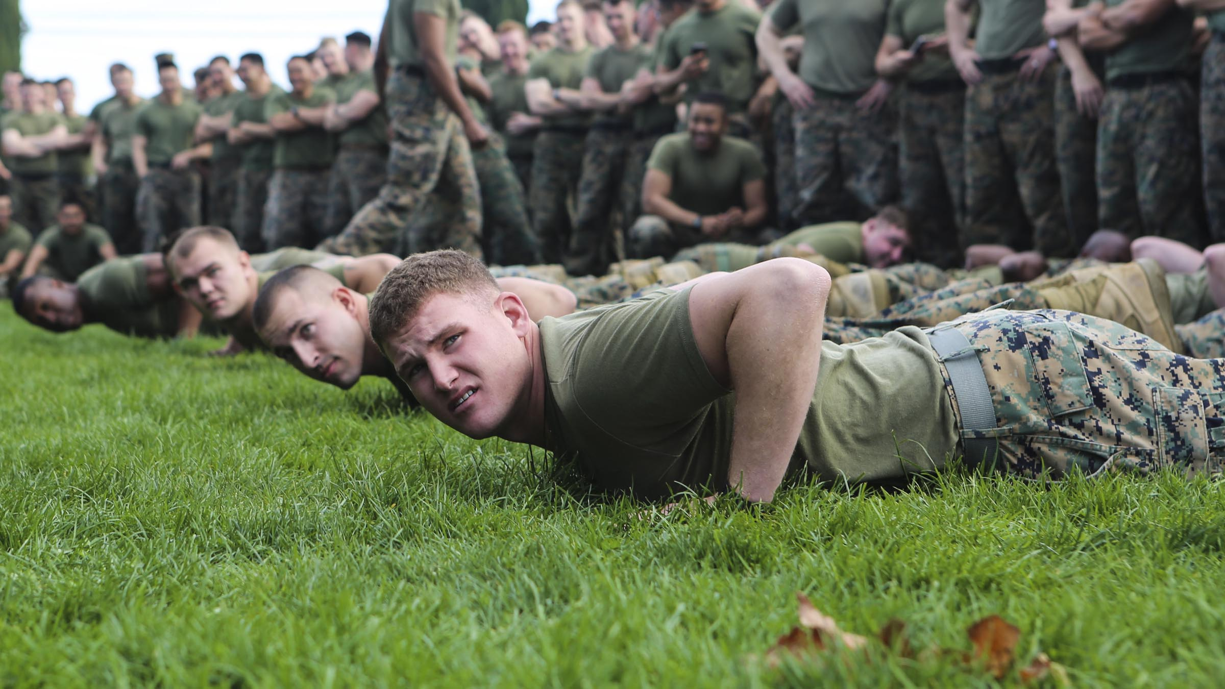 Four new service members do push-ups in front of a line of their peers.