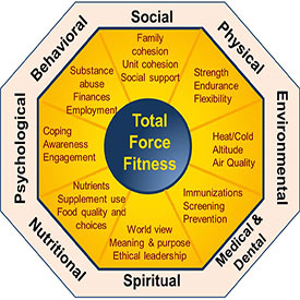 Total force fitness diagram